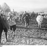 63252 Bandenkampf in Bosnien. Kroatische Legionäre, darunter viele Muselmanen kämpfen auf deutscher Seite gegen Tito-Banden. Hier treten die Männer eines Dorfes an, ihre Heimat gegen die Banden zu verteidigen. PK-Aufn.Kriegsber.Thiede HH 13-1-44 [Herausgabdatum]